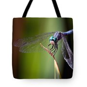 Dragonfly 0367 Tote Bag