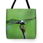 Dragonfly 14 Tote Bag