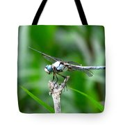 Dragonfly 15 Tote Bag