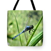 Dragonfly 4 Tote Bag