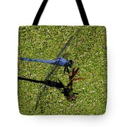 Dragonfly 73 Tote Bag