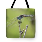 Dragonfly Against Green Backdrop Tote Bag