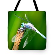 Dragonfly Blue Tote Bag