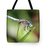 Dragonfly Captures Tiny Cockroach Tote Bag