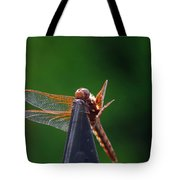 Dragonfly Cling Tote Bag
