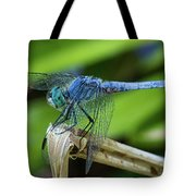 Dragonfly Color Tote Bag