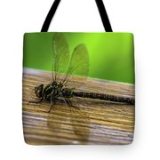 Dragonfly Colors Tote Bag
