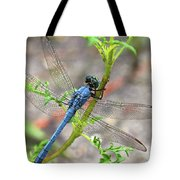 Dragonfly Delight Tote Bag