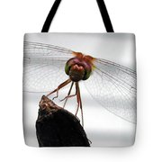 Dragonfly Face Tote Bag