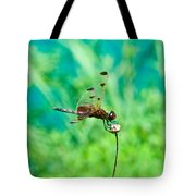 Dragonfly Hanging On Tote Bag