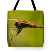 Dragonfly Holding On Tight Tote Bag