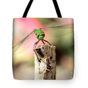 Dragonfly In The Petunias Tote Bag