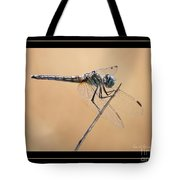 Dragonfly Needlepoint With Border Tote Bag