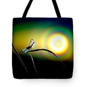 Dragonfly Of Color Tote Bag