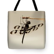 Dragonfly On A Pine Needle Tote Bag