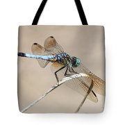 Dragonfly On Bent Reed Tote Bag