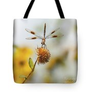 Dragonfly On Dead Bud Tote Bag