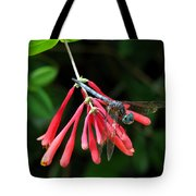 Dragonfly On Honeysuckle Tote Bag