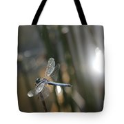 Dragonfly On Reed Tote Bag