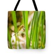 Dragonfly On Reed Leaf Tote Bag