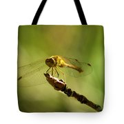 Dragonfly Perched Tote Bag