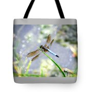 Dragonfly Portrait Tote Bag