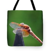 Dragonfly Red Tote Bag