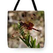 Dragonfly Resting On The Green Tote Bag