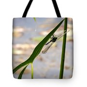 Dragonfly Resting Upside Down Tote Bag
