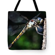 Dragonfly Revisited Tote Bag