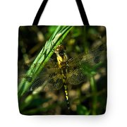 Dragonfly Venation Revealed Tote Bag