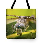 Dragonfly Wiping Its Eyes Tote Bag