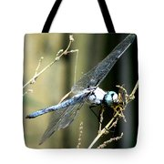 Dragonfly With Yellowjacket 1 Tote Bag