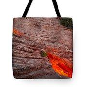 Dragon's Keep Tote Bag