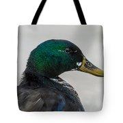 Drake Mallard Wild Duck Tote Bag
