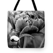 Drama In The Garden Tote Bag