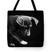 Dramatic Black And White Puppy Dog Tote Bag