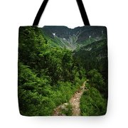 Dramatic Mountain Landscape With Distinctive Green Tote Bag