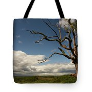 Dramatic Overlook Tote Bag