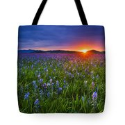 Dramatic Spring Sunrise At Camas Prairie Idaho Usa Tote Bag