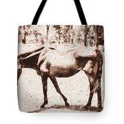 Drawn Ranch Horse Tote Bag