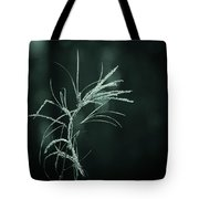 Dream Catcher Tote Bag by Mary Amerman