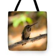 Dream Hummingbird Tote Bag