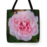 Dream Rose Tote Bag