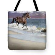 Dreamer On The Beach Tote Bag
