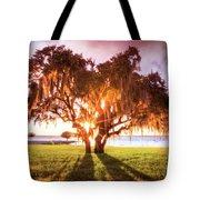 Dreaming At Sunrise Tote Bag