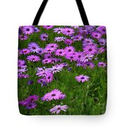 Dreaming Of Purple Daisies  Tote Bag
