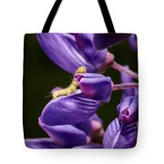 Dreaming Of Wings Tote Bag