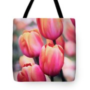 Dreaming Tulips Tote Bag
