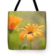 Dreams Of Orange Symphony In Spring 2 Tote Bag